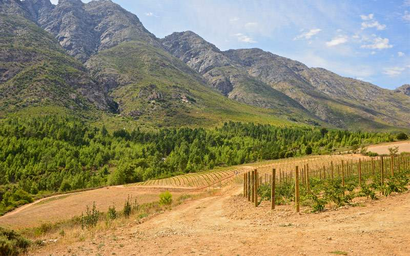 Tulbagh valley South Africa Regent Seven Sea World
