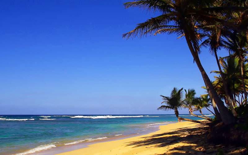 Punta Cana Beach in the Dominican Republic