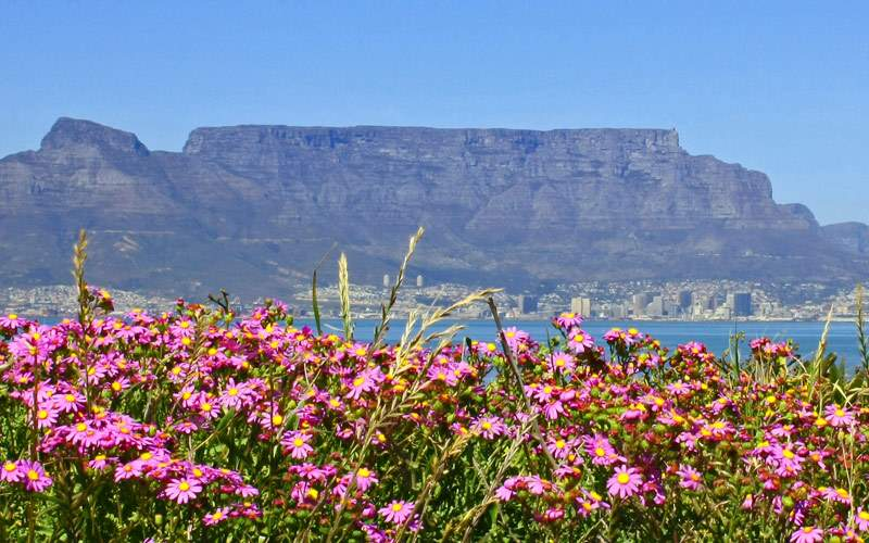 Table Mountain in Cape Town South Africa Silversea