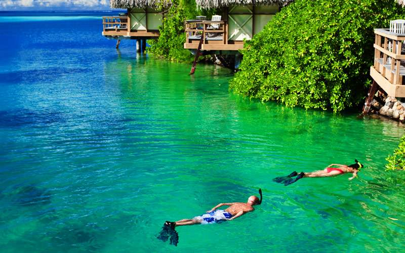 Snorkeling South Pacific