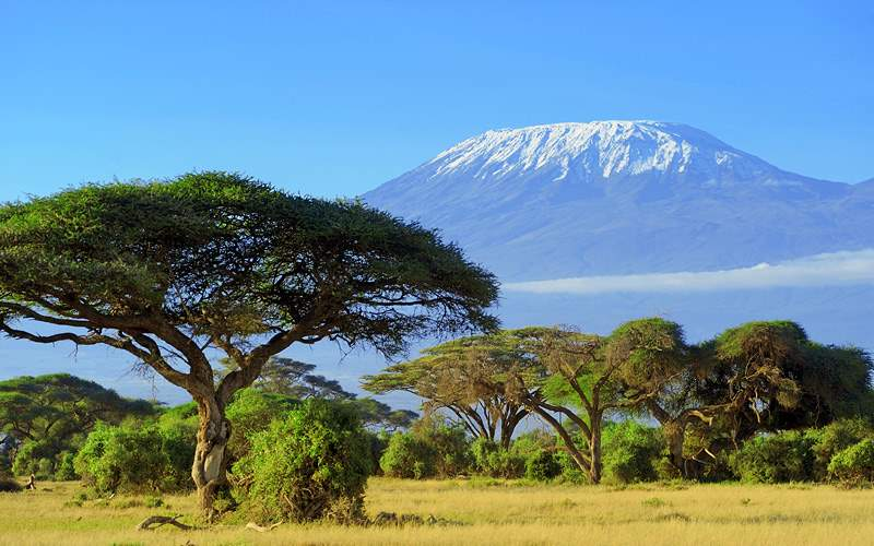 Snow on top of Mount Kilimanjaro in Africa