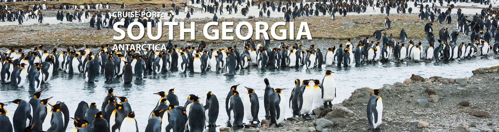 Cruises to South Georgia, Antarctica