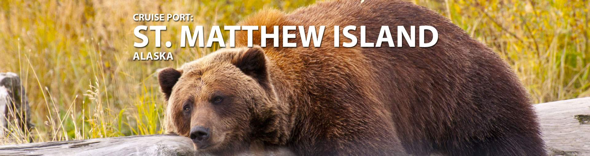 Cruises to St. Matthew Island, Alaska