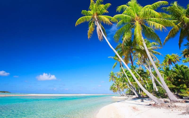 Beach at Tikehau at Tikehau Atoll French Polynesia