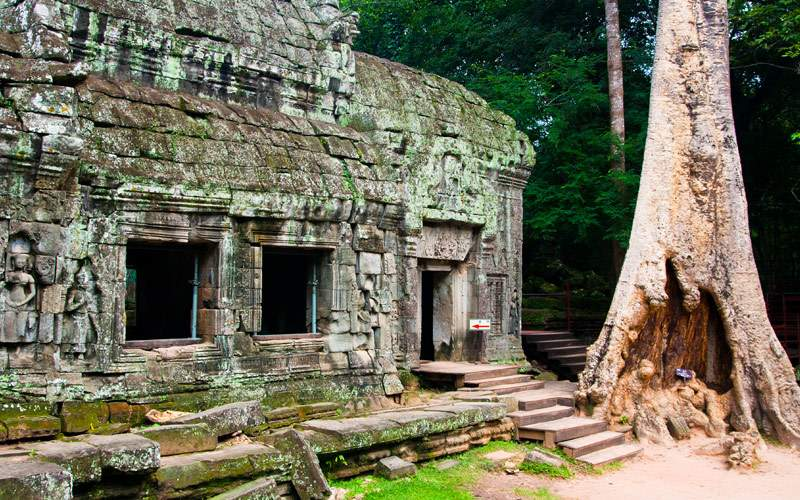 Ta Prohm Siem Reap Camboddia UNESCO World Heritage