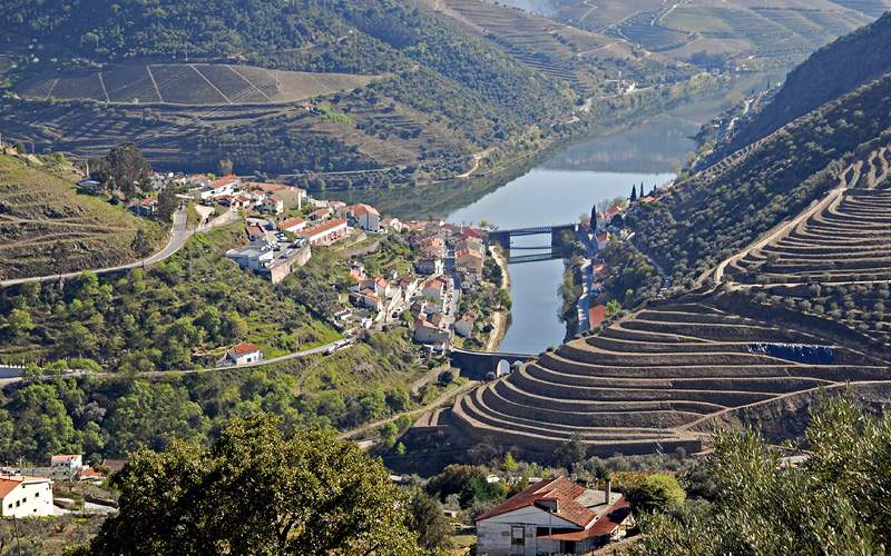 Pinhao Vineyards Douro Valley Viking River Europe
