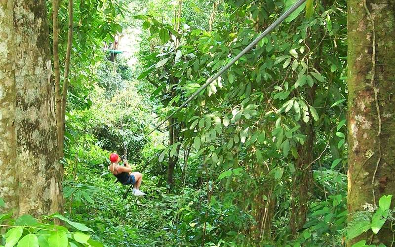 Costa Rica Jungle Zipline - Windstar Cruises