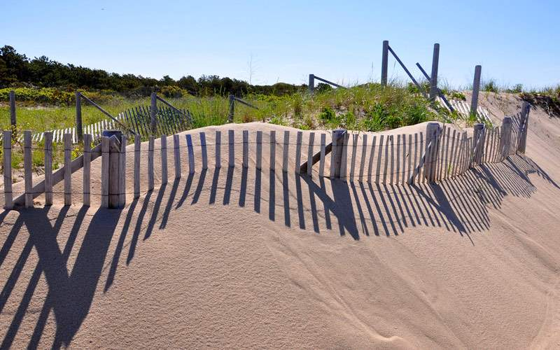 Dunes near Provincetown, MA
