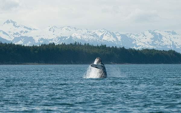 Seabourn Cruise Line-Juneau, Alaska
