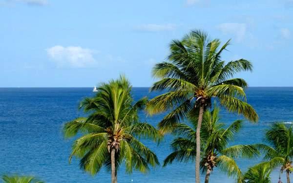 Windstar Cruises-Caribbean