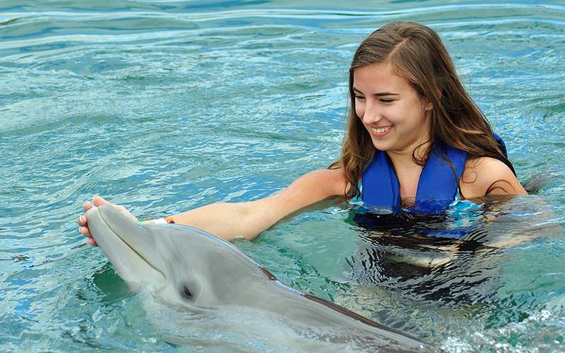 Girl swimming with dolphin Royal Caribbean Bermuda
