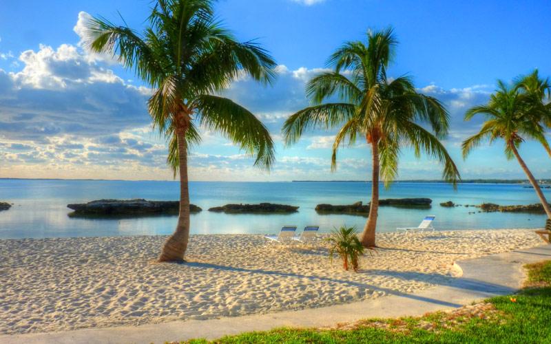 Cruises To The Bahamas 2017 And 2018 Bahamas Cruises The