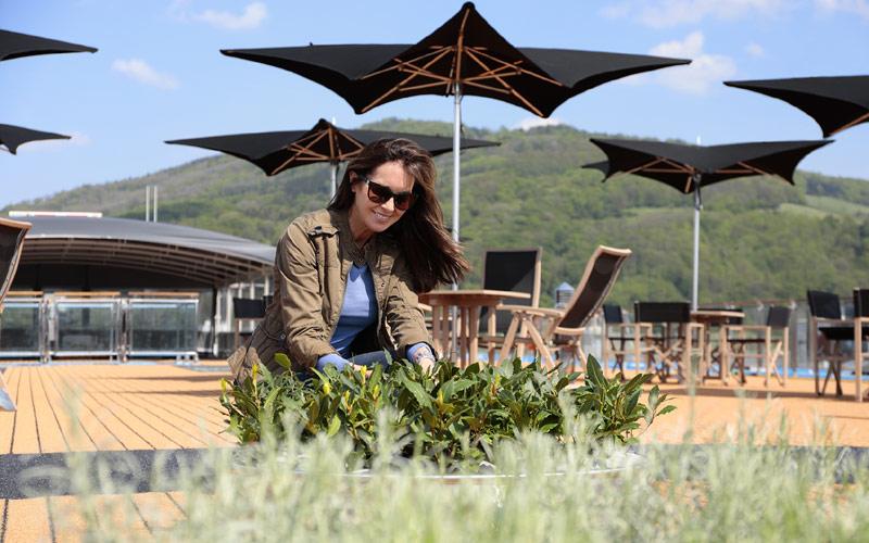 Herb garden aboard AmaMagna
