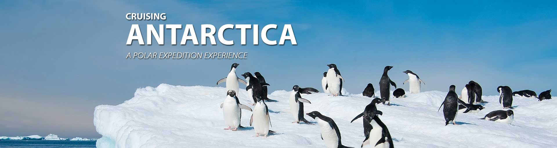 Cruise to Antarctica and see the penguins
