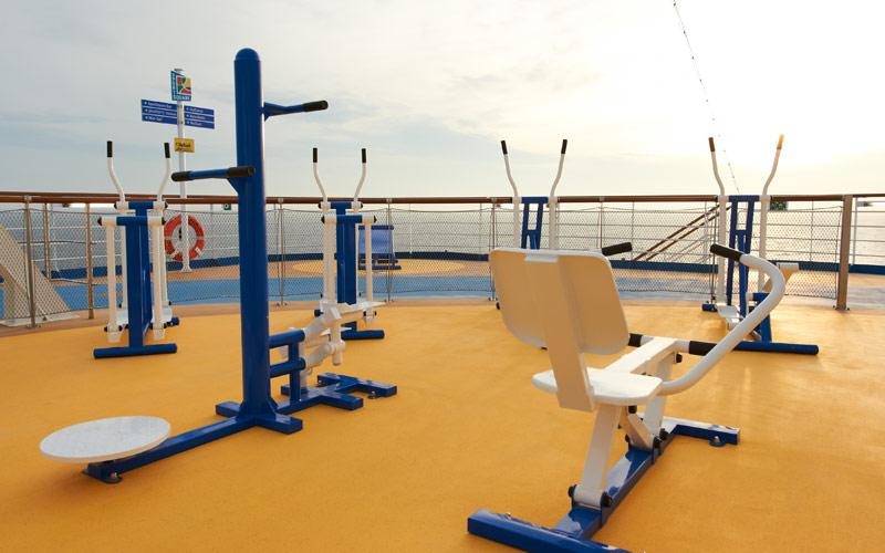 Carnival Cruise Line Carnival Magic Vita Course