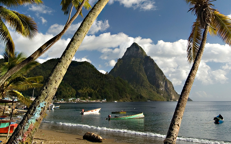 beach and palm trees in St. Lucia Carnival Cruises