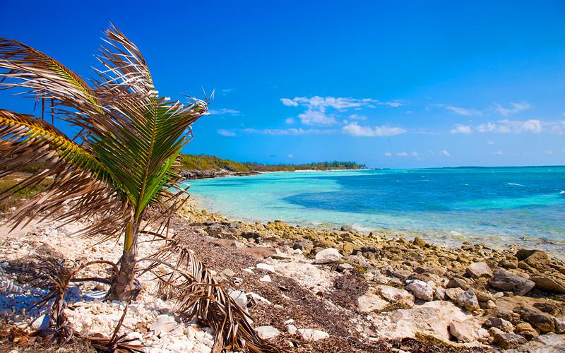 CocoCay Bahamas nature walk Celebirty Cruises