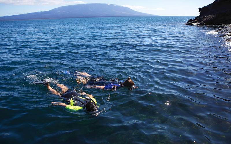 couple snorkeling off the coast Celebrity Cruises