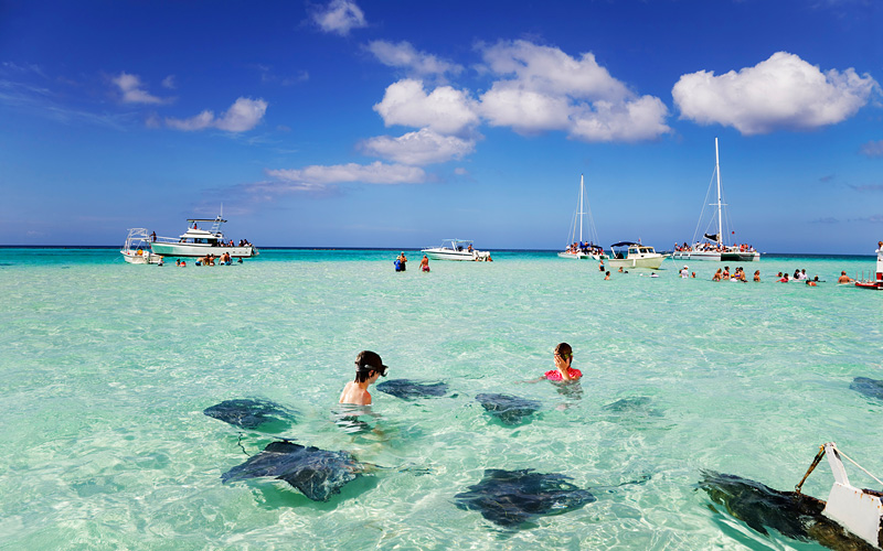 Stingrays Grand Cayman Celebrity Cruises Caribbean