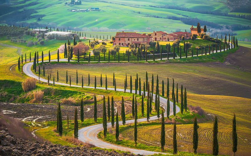 Sunny fields of Tuscany, Italy Celebrity Cruises