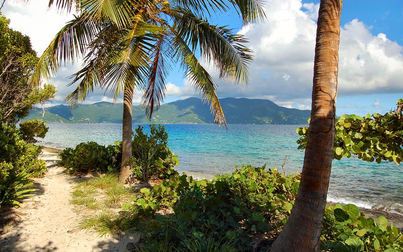 Beach Jost Van Dyke, British Virgin Islands Cunard