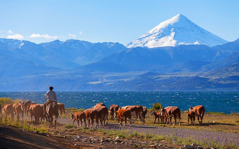 Gauchos in Patagonia, Argentina Cunard Line World