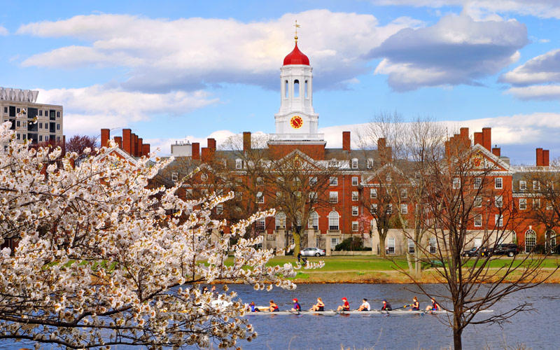 Harvard University Boston New England Cunard Line