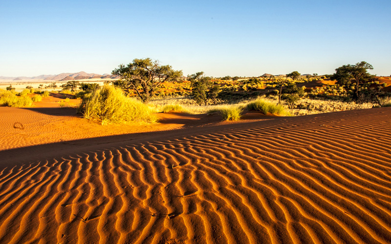 Namib Desert - Cunard Line