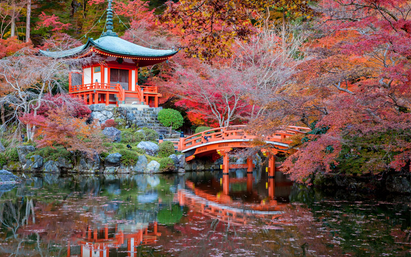 Best Natural Sights In Japan