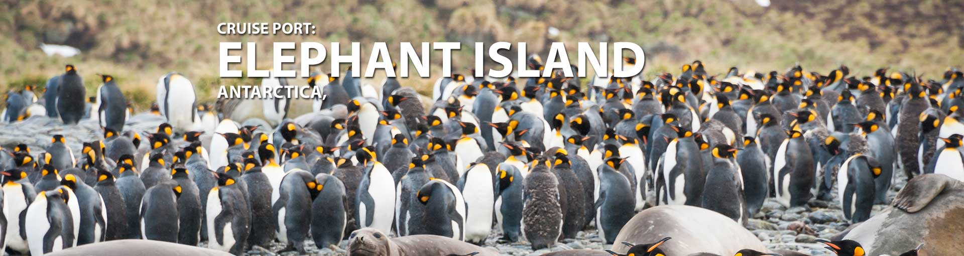 Cruises to Elephant Island, Antarctica