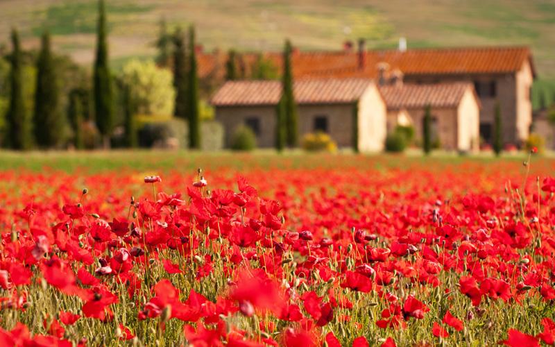 Europe Cruisetours, Tuscany, Italy
