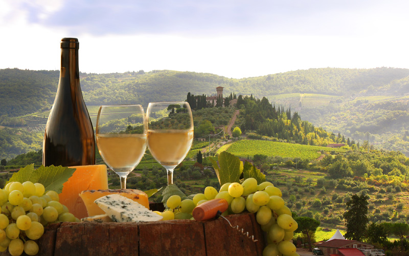 Europe Cruisetours, Vineyard in Chianti, Tuscany