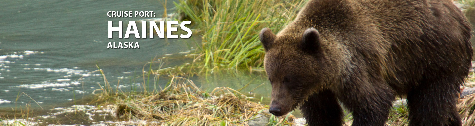 Cruises to Haines, Alaska