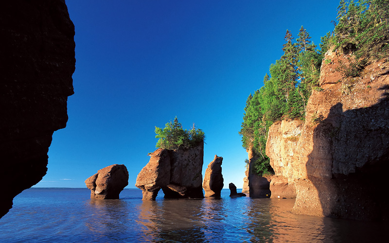 Bay of Fundy Hopewell Rocks Canada Holland America