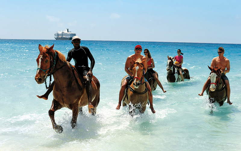 horseback ride excursion Caribbean Holland America