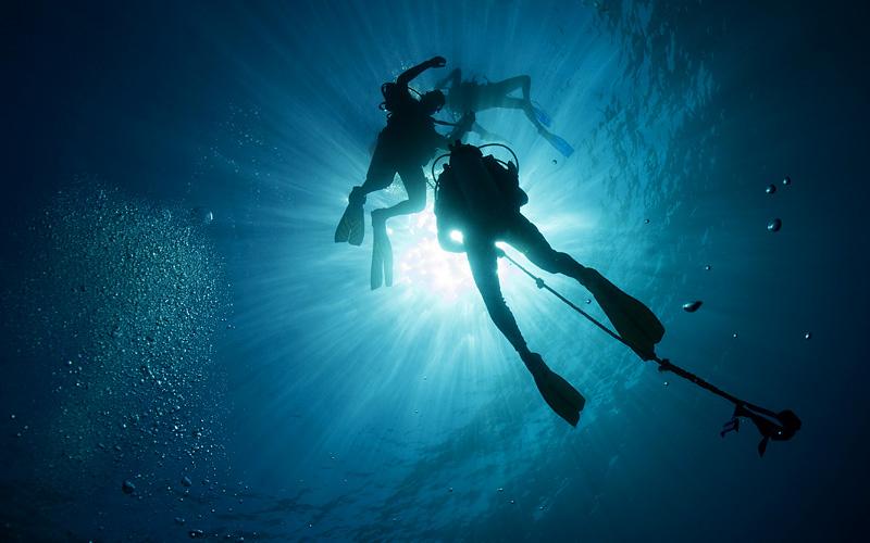 Scuba divers Mexican Riviera Holland America