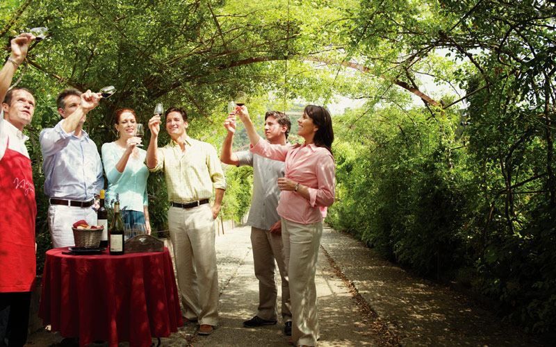 Wine tasting excursion in the Mediterranean