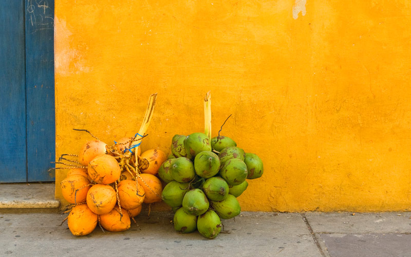 Fresh coconuts on the street in Cartagena Colombia