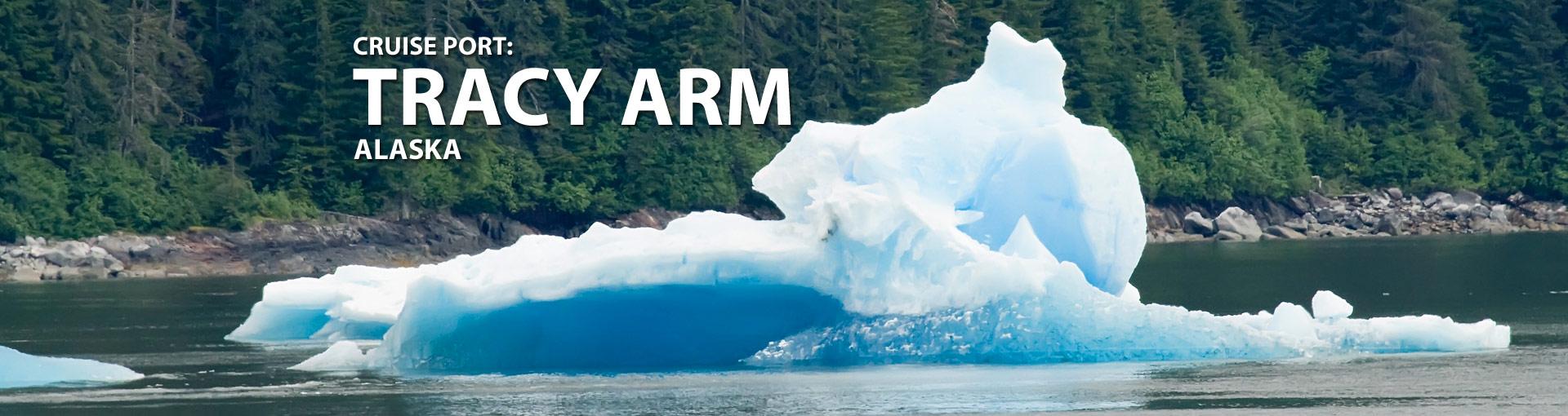 Cruise Port: Tracy Arm Fjord, Alaska