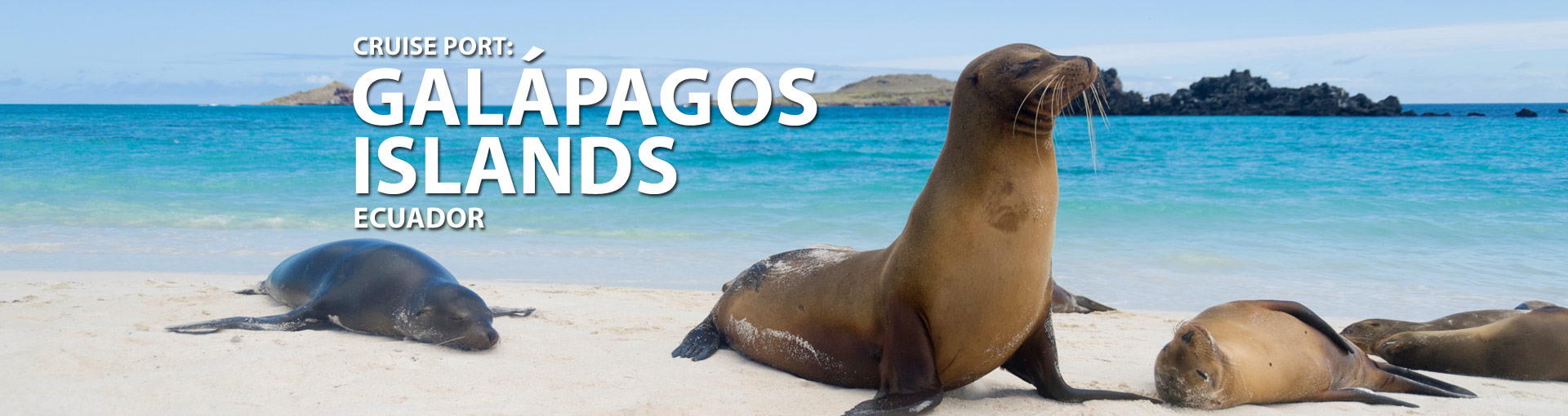 Cruises from the Galapagos Islands, Ecuador