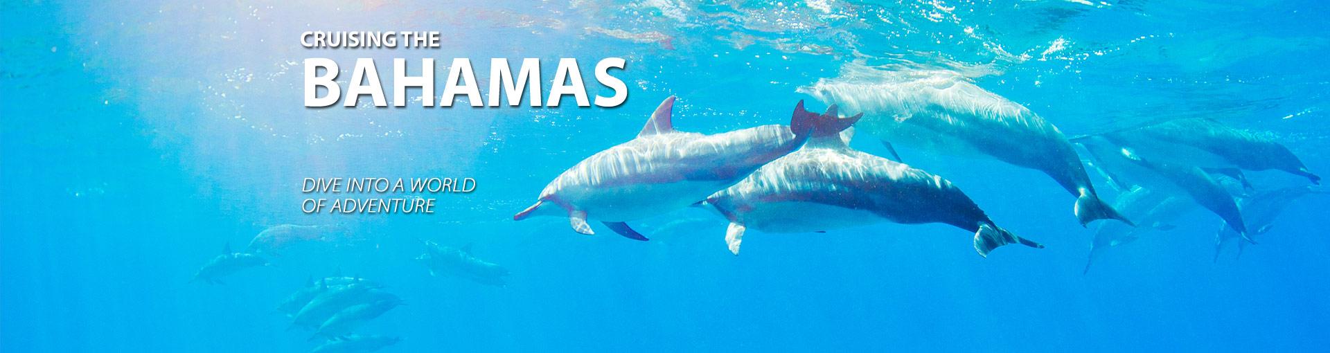 Cruises To The Bahamas And Bahamas CruisesThe Cruise Web - Bahama cruise deals