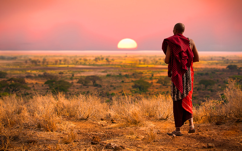 Massai Man overlooks Serengetti in Tanzania Africa
