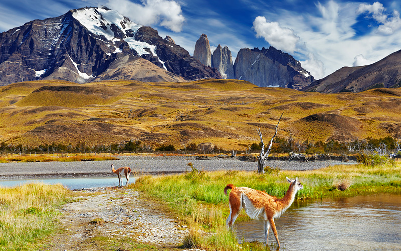Torres del Paine National Park Chile Oceania World