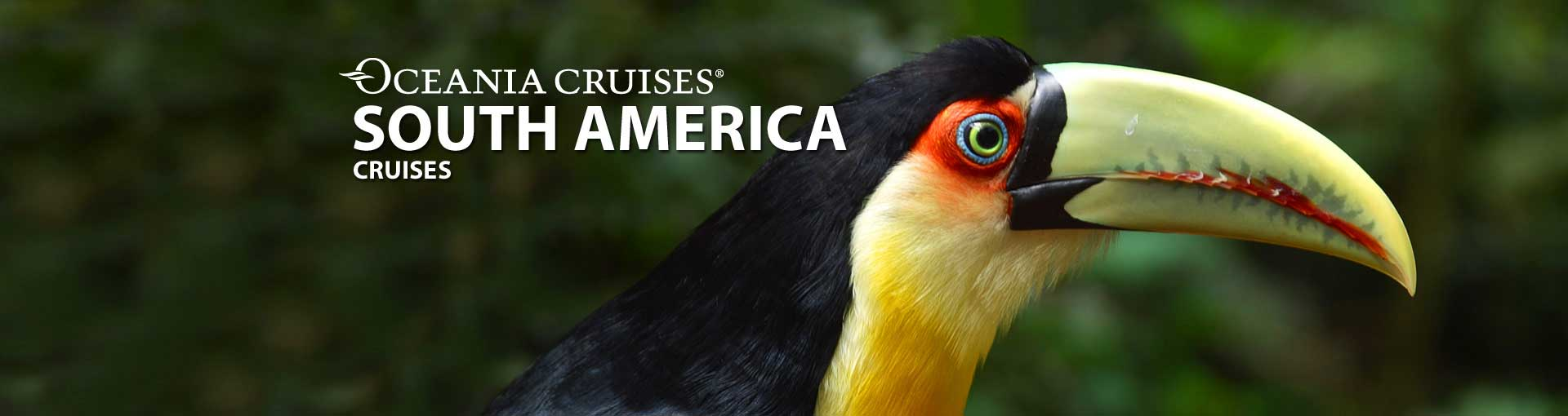 Oceania Cruises South America Cruises