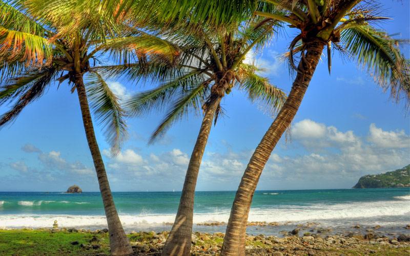 Pigeon Island, Saint Lucia Princess Caribbean