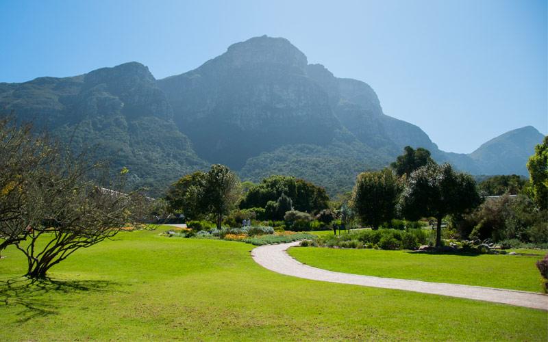 Kirstenbosch gardens Princess Cruises Africa