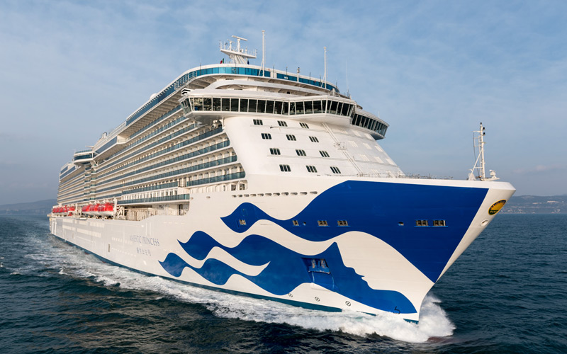 Majestic Princess Bow Art