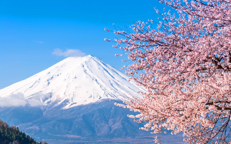 Princess Asia Cruisetour Mt. Fuji Lake Kawaguchiko