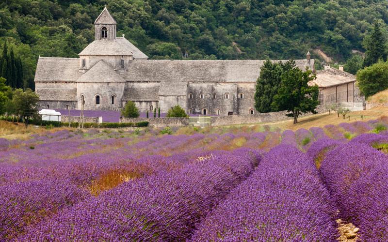 Provence, France Regent Seven Seas Transatlantic