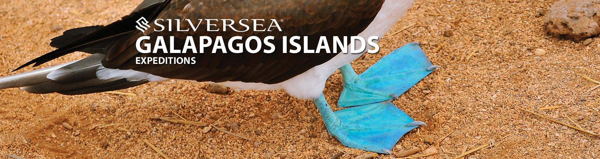 Silversea Cruises Galapagos Cruises